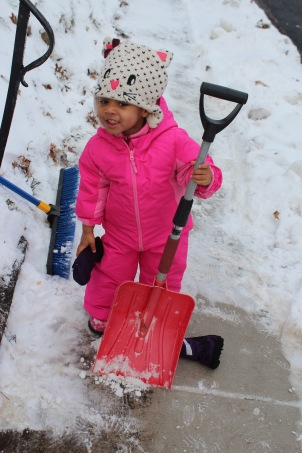 Quinn Helping in the Snow
